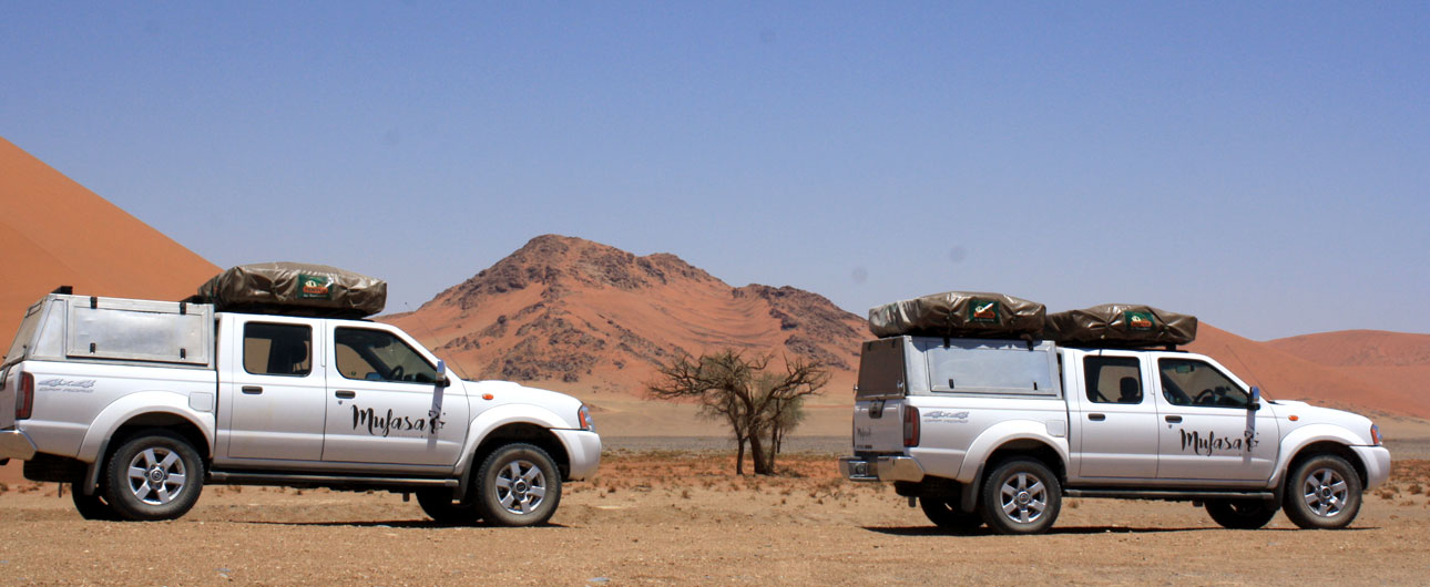 Car hire and safaris